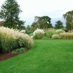 kew-grasses