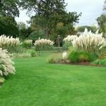 kew-grasses-garden